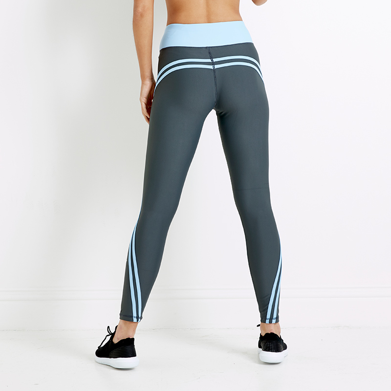 Apexgray Airstream Sports Leggings